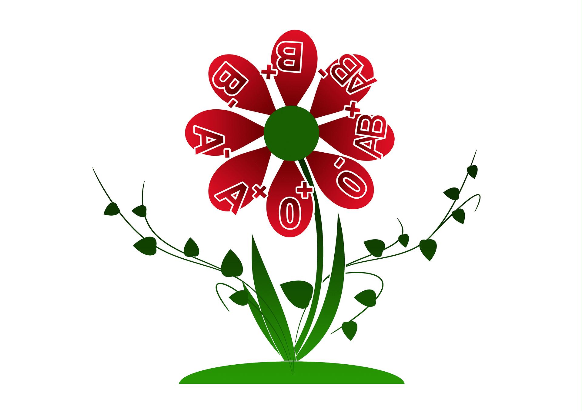 Víte, jakou máte krevní skupinu? / foto: pixabay.com