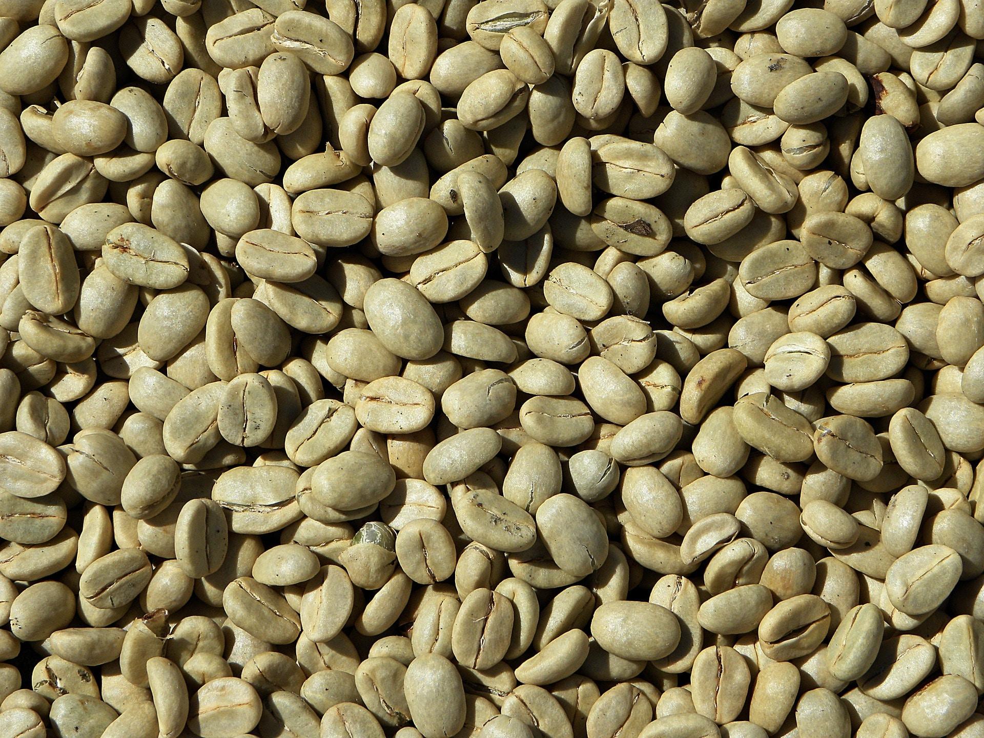 Zrna zelené kávy jsou opravdu velmi tvrdá / zdroj: pixabay.com
