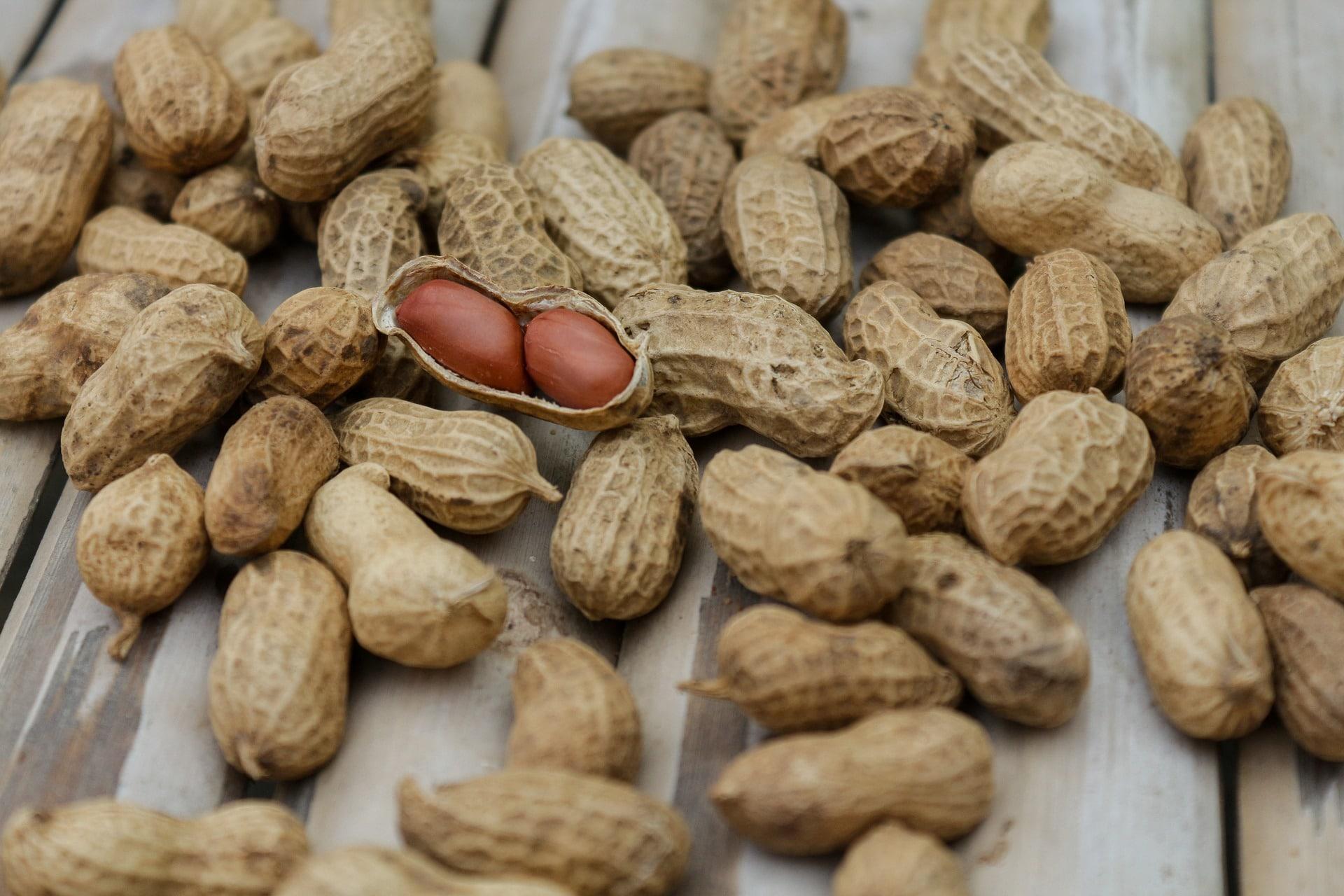 Arašídy patří mezi luštěniny a jsou bohatým zdrojem bílkovin / foto: pixabay.com