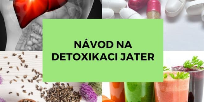 Očista jater po antibiotikách: Hledejte zdraví v přírodě