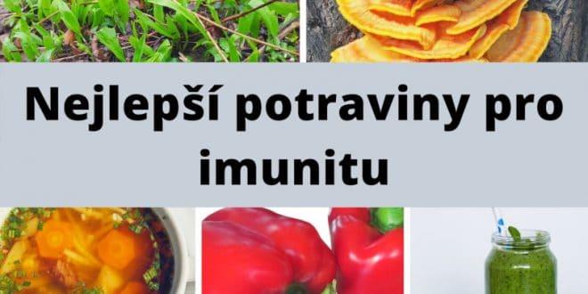 Jak posílit imunitu: 6 přírodních tipů pro celou rodinu